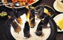 Ẩm thực Hàng Châu: món ngon Trung Quốc không phải ai cũng biết