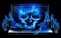 Cuộc sống bí ẩn của các hacker