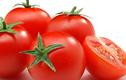 Video: 8 điều cấm kỵ khi ăn cà chua không phải ai cũng biết