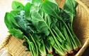 Video: 8 loại thực phẩm tăng tốc giải độc cho ruột