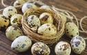 Video: Hãy ăn trứng cút khi bị những bệnh này, hiệu quả bất ngờ
