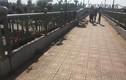 Đi trên cầu bộ hành Suối Tiên, nữ sinh bất ngờ trợn mắt, nôn ói rồi tử vong