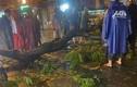 Nhánh cây xanh gãy đè 1 người tử vong trong mưa ở TP HCM