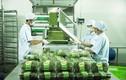 Vingroup ký thỏa thuận hợp tác với 250 HTX và hộ sản xuất