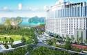 Diamond Invest Holdings - Nguyễn Minh Land - G5 Property phân phối FLC Grand Hotel Hạ Long