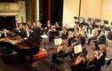 """Toyota Classics: Đêm nhạc với """"Mê cung"""" của những tuyệt phẩm!"""