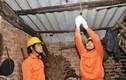 EVN HANOI và trách nhiệm với cộng đồng xã hội