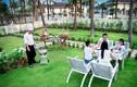 TripAdvisor vinh danh Premier Village Danang Resort là khu nghỉ dưỡng tốt nhất thế giới