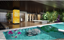 Seva Spa & Beauty Destination – khám phá Spa hiện đại số một Việt Nam