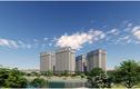 KĐT Mường Thanh Thanh Hà: Mở bán 1.200 căn hộ cuối cùng giá chỉ từ 10,5 triệu/m2