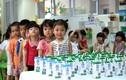 Hàng triệu ly sữa học đường cung cấp cho trẻ e thủ đô Hà Nội mỗi ngày