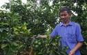 Sơn La: Khánh thành nhà máy chế biến hoa quả tươi 3.500 tỷ