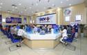 BIDV siết khoản nợ gần 500 tỷ được thế chấp bằng cổ phiếu Thời trang NEM