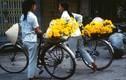"""Những hình ảnh về xe đạp """"thần thánh"""" ở Hà Nội năm 1990"""