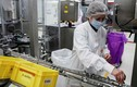 Vaccine CureVac trở lại đường đua: Lợi hại hơn xưa?