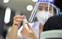 Người được tiêm vắc xin, nhiễm nhưng không mắc COVID-19?