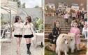 Check-in Đà Lạt siêu đẹp, cặp chị em sinh đôi gây sốt mạng