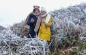 Quảng Ninh: Băng tuyết phủ trắng xóa đường lên biên giới