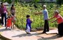 Tết của những người trẻ: Mong ngóng về nhà - Hào hứng đi xa