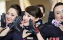 Ngắm nữ tiếp viên hàng không đẹp tinh khôi nhảy flashmob