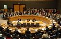 Nga tẩy chay hội nghị LHQ về Crimea
