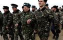 8.000 cựu lính Ukriane ở Crimea muốn làm công dân Nga