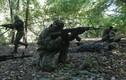 Ly khai đông Ukraine thành lập lực lượng vũ trang thống nhất