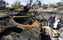 Donetsk, Lugansk thiệt hại 440 triệu USD trong cuộc xung đột