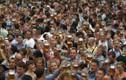 """""""Xõa"""" hết mình trong lễ hội bia truyền thống Đức"""
