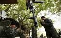 """Tổng thống Belarus: """"Không ai chiến thắng trong xung đột Ukraine"""""""