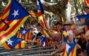Thủ hiến Catalan ký sắc lệnh tổ chức trưng cầu dân ý