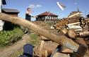 Ukraine ráo riết thu gom củi để dùng cho mùa đông