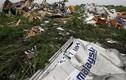 Vụ MH17: Báo Nga tố tỷ phủ Ukraine định ám sát Putin