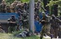 Ukraine thừa nhận quân Nga không chiến đấu ở miền đông