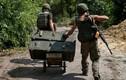 Chiến tuyến Ukraine nóng hầm hập qua ảnh Reuters