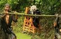 Độc đáo lễ hội rước chó ở Trung Quốc