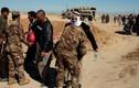 Chùm ảnh cập nhật tình hình chiến sự đánh IS ở Tây Mosul