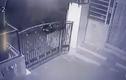 Video: Báo hoa mai bật nhảy ngoạn mục để truy sát con mồi