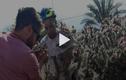 Video : Người đàn ông lao trúng bụi xương rồng