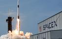 Năm 2024, SpaceX có thể đưa người tới sao Hỏa định cư vĩnh viễn