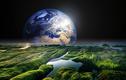 Sinh vật nhỏ bé có thể xâm chiếm, biến sao Hoả thành Trái đất