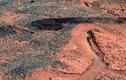 NASA bỏ sót dấu hiệu sự sống trong các bức ảnh sao Hỏa?