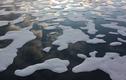 Cực nóng loạt dấu hiệu cảnh báo Trái đất sắp hứng nhiều thảm họa
