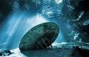 """Tiết lộ sốc: UFO trồi lên từ đáy biển khiến con người khó """"bắt""""?"""