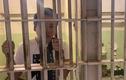 Lạnh gáy xem Khoa Pug review nhà tù khét tiếng ở Mỹ
