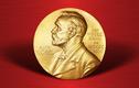 Vì sao WHO được dự đoán đoạt Nobel Hòa bình 2021?