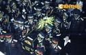 Biển người đội mưa đưa tiễn 18 chiến sĩ Mi-171 hi sinh