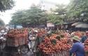 Người dân Lục Ngạn đổ xô đi bán vải, đường ùn tắc hàng cây số