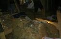 Đang ngủ, cháu bé bị đá khổng lồ lăn vào nhà đè tử vong