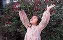 """Mê mẩn ngôi nhà được """"ướp hương"""" bởi hàng nghìn đóa hồng ở Đắk Lắk"""